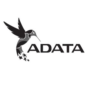 محصولات برند ای دیتا ADATA